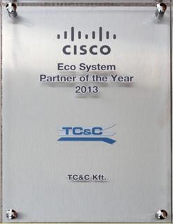 Eco System Partner of the Year 2013